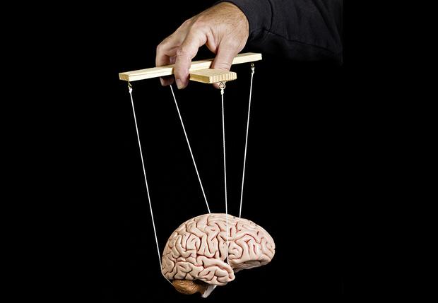 Фото №3 - Как эффективно разогнать мозг: советы невролога