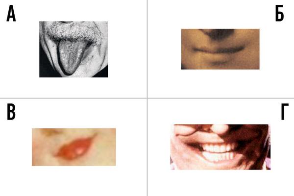 Фото №5 - Проверь, хорошо ли ты знаешь женщин