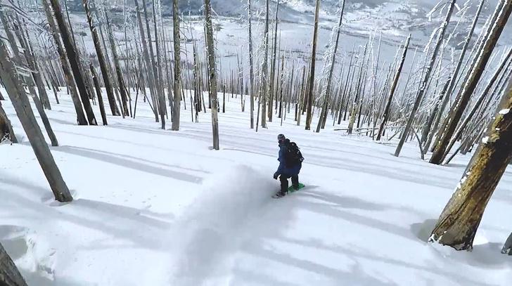 Фото №1 - Сноубординг по лесистому склону. Во-первых, это красиво... (ВИДЕО)