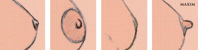 Грудь соски форма картинки