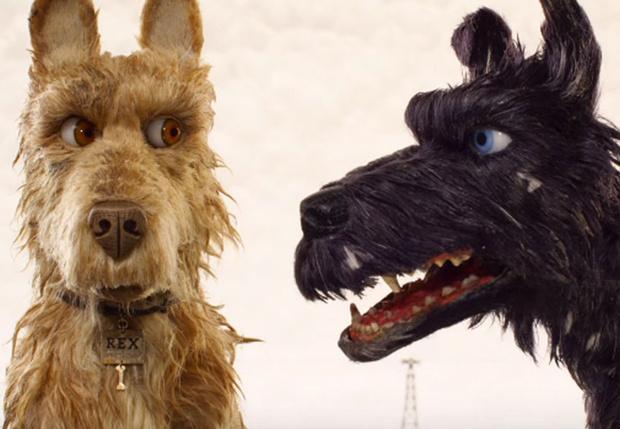 Фото №1 - Понимает ли собака, о чем лает другая собака?