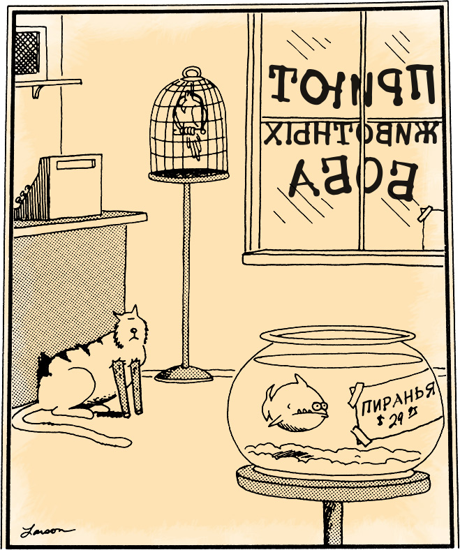 Лучшие карикатуры из серии  «Дальняя сторона»