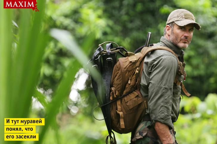 Фото №1 - Герой программы «Уйти от погони» Джоэл Ламберт: «Мы потеряли двух продюсеров в джунглях после того, как на них напали африканские пчелы-убийцы»