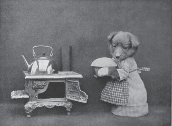 Пустолайка занята на кухне