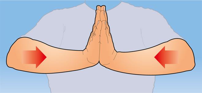Фото №3 - Как натренировать руки, прилагая минимум усилий