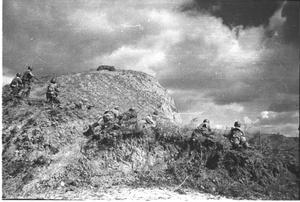 Фото №1 - Синявинские высоты: как саперная лопатка стала любимым оружием советской пехоты