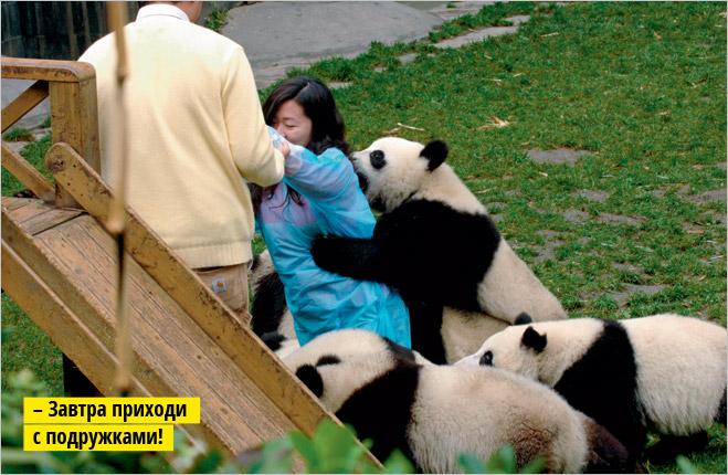 Фото №8 - Устроили из зоопарка цирк!