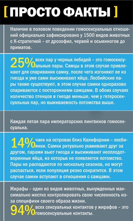 seksualnaya-lesbiyskaya-tyurma-raznaya