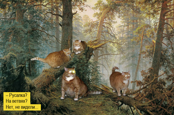 Фото №1 - Пушистая чума XXI века. Как коты захватили мир и Интернет