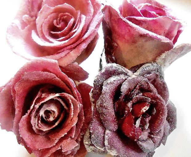 Фото №3 - Как есть цветы: салат из хризантем и еще два простых блюда