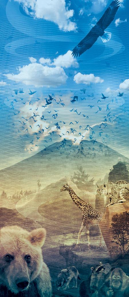 Фото №4 - 100 000 лет тому вперед