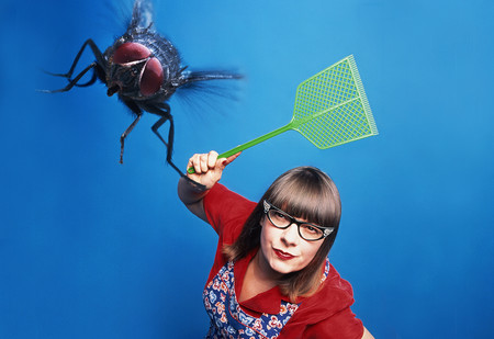Почему мухи летают по квадратной траектории, а не кругами?