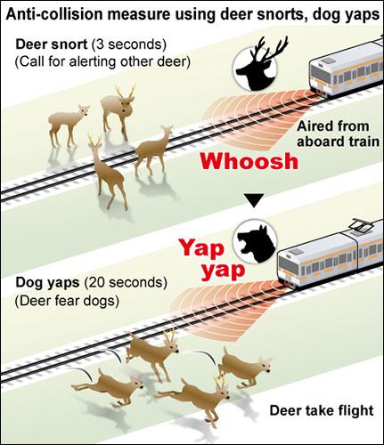 Фото №2 - Японские поезда будут лаять на оленей