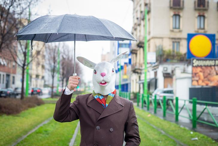 Фото №1 - Как выбрать зонт