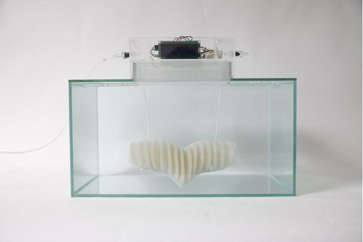 Фото №1 - Маска, которая позволит тебе дышать под водой (ВИДЕО)