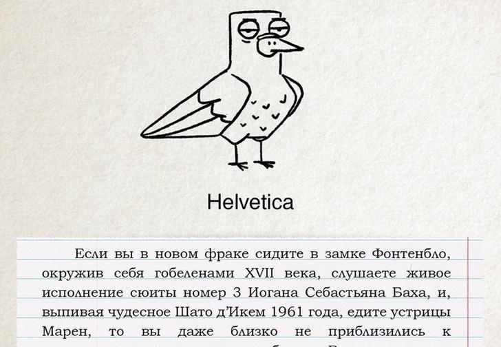 Фото №1 - Если бы голуби были шрифтами! Смешные и познавательные иллюстрации от российского художника