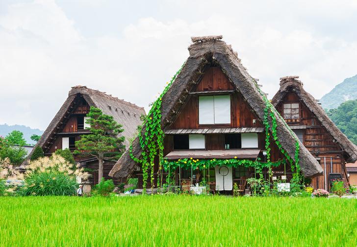 Фото №1 - В Японии начали массово продавать за бесценок или отдавать бесплатно пустующие дома