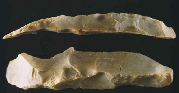 Кремниевые бритвы