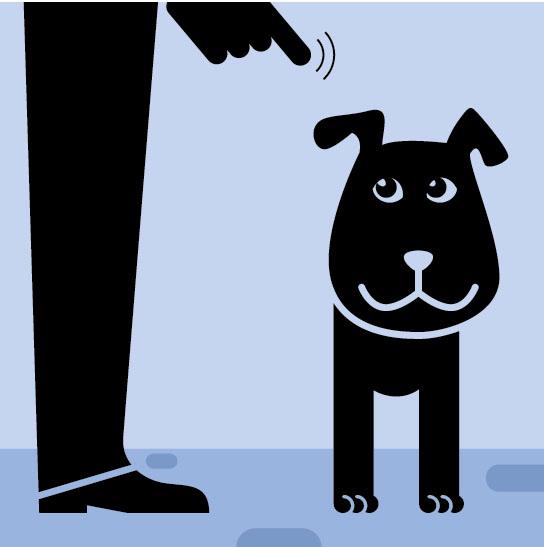 Фото №2 - Как понять язык собаки. Краткий человеко-собачий словарь