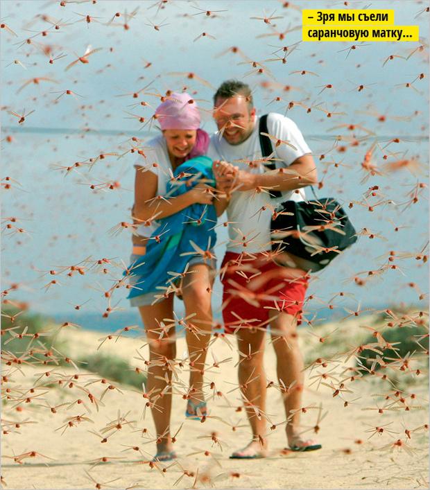 Фото №7 - 10 самых поразительных пляжей на Земле