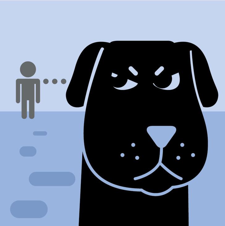 Фото №4 - Как понять язык собаки. Краткий человеко-собачий словарь