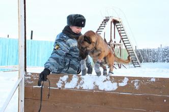 Фото №3 - Э? Что? Наших заключенных теперь охраняют южнокорейские псы-клоны?!