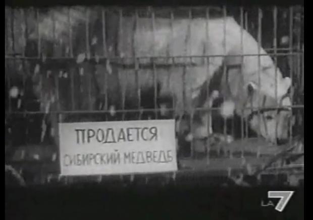 Фото №16 - Самые идиотские надписи на русском в иностранных фильмах