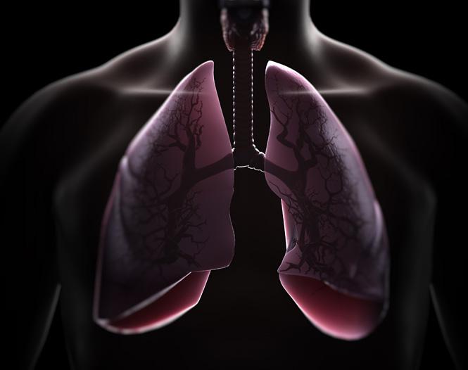 Хронические заболевания легких