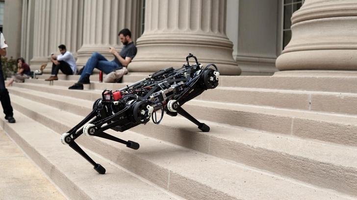 Фото №1 - Робот дня от MIT: собака, но маленькая и слепая (ВИДЕО)