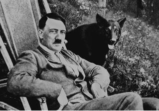 Гитлер сбежал?!