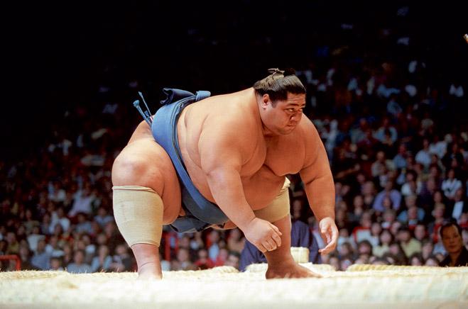 Фото №7 - Сумо: весомая статья о японской борьбе