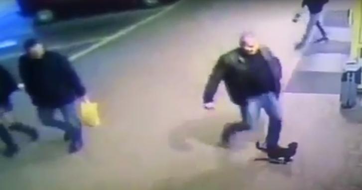 Фото №1 - Белорусский милиционер потерял работу из-за того, что пнул котенка