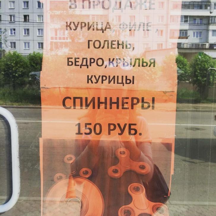 Фото №25 - Самые смешные картинки недели и лифчик русалочки!