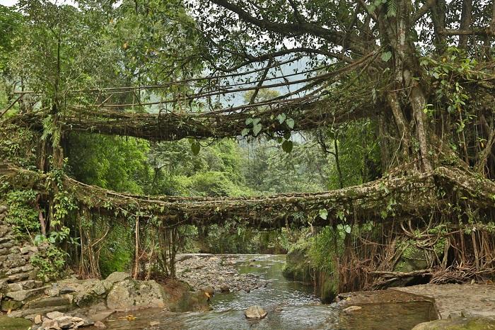 Фото №16 - Из Ассама в Черапунджи через Манипур, или Все дороги ведут в дождь