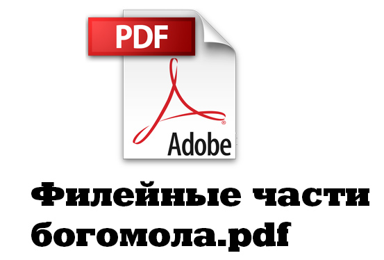 Фото №1 - Что творится на компьютере Федора Конюхова