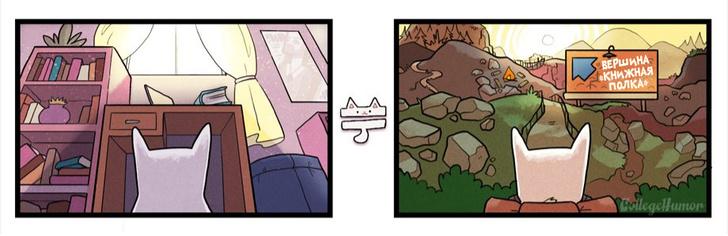 Фото №2 - Что на самом деле думают коты