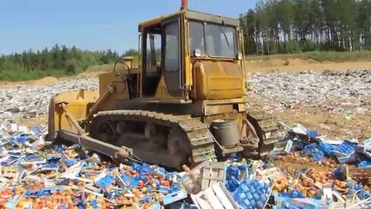 Фото №1 - Правительство России перестанет давить бульдозером сыр