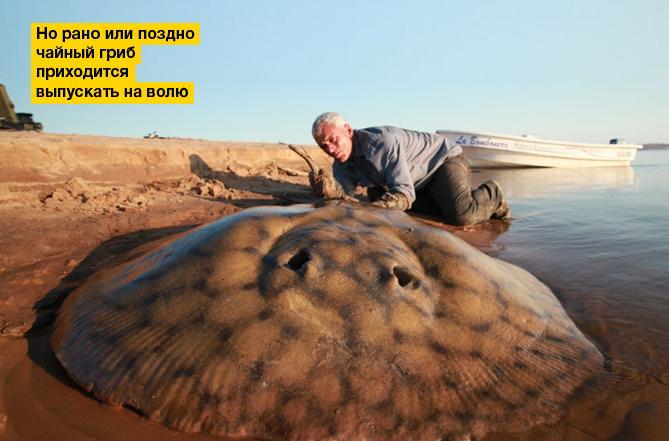 Фото №2 - MAXIM Zoom 2012. Часть шестая (fin)