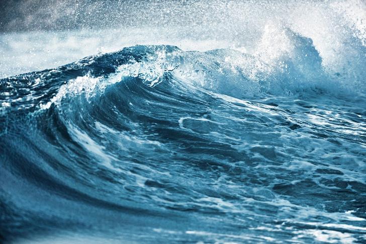 Фото №1 - Океаническая свежесть: Bulgari выпустил на волю AQVA POUR HOMME ATLANTIQVE