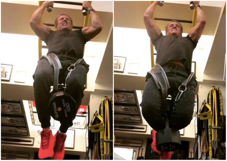 Фото №1 - 71-летний Сильвестр Сталлоне подтягивается с весом в 45 кг! Вдохновляющее ВИДЕО