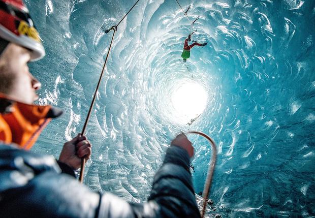 Фото №1 - Добро пожаловать в пингвинье дупло!