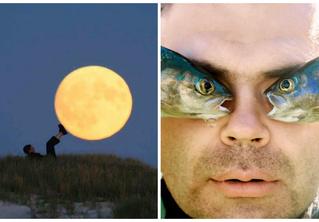 Улучшайзинг наладошкинга: 26 идей для необычной фотографии