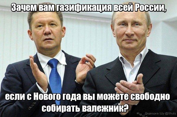 Фото №1 - Лучшие шутки о законе, позволяющем россиянам БЕСПЛАТНО собирать валежник