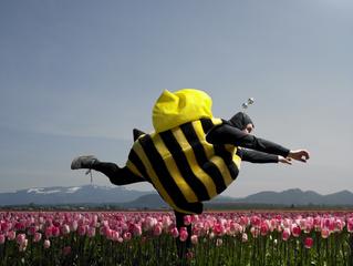 Как тюльпаны чуть не уничтожили экономику Голландии