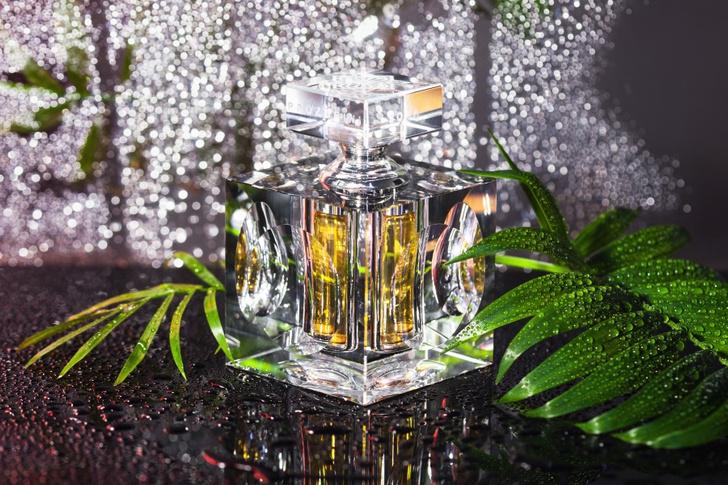 Фото №2 - Чудодейственные ароматы PROZORINI PERFUME