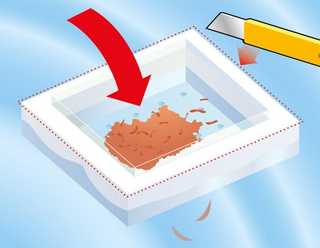 Кормить аквариумных рыбок