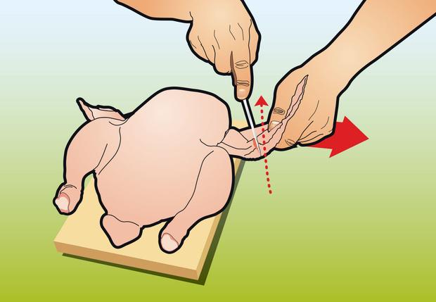 Фото №1 - Как вытащить все кости из курицы: инструкция в картинках