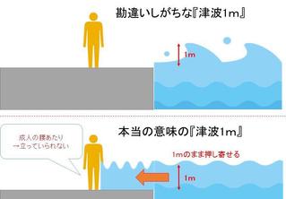 Насколько опасно цунами высотой один метр (видео)