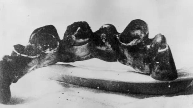 Фото №2 - Оказывается, Гитлер действительно умер, доказали французские ученые