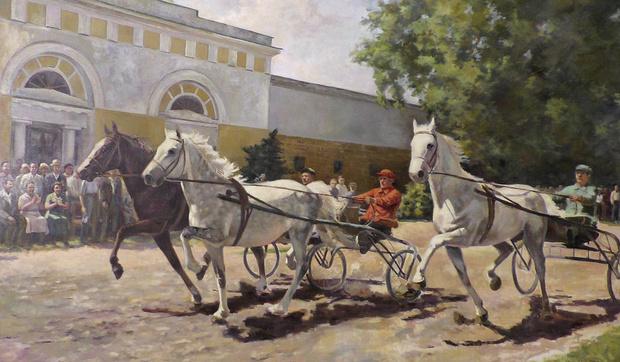 Тренировка лошадей на Хреновском заводе